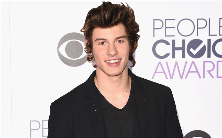 Shawn Mendes, smile, guys, celebrity, canadian singer