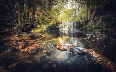 foto de Télécharger fonds d'écran l'automne cascade rivière
