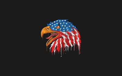 Bald Eagle, USA Flag, grunge art, American flag, creative art, Flag of USA, gray background, eagle