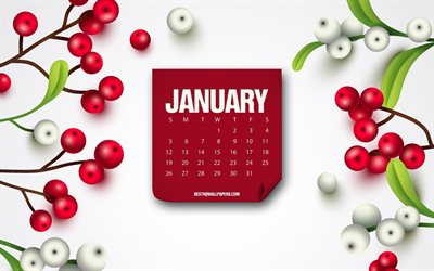 January 2020 Calendar, red paper, month calendar, January, background with berries, calendars