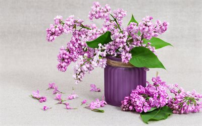lilac, spring flowers, a vase with lilacs, purple flowers, beautiful bouquet of lilacs