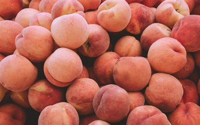 peaches, fruit, summer, peach texture, mountain of ripe peaches