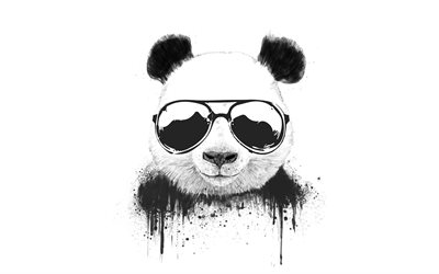 funny panda, 4k, cartoon animals, minimal, white backgrounds, pandas, panda minimalism