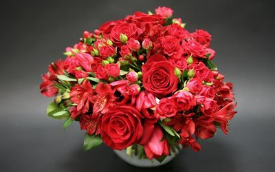 red roses, red flower, rose, red flowers