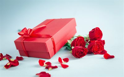 red roses, red gift box, romantic gift, red silk bow, romantic background, roses, red flowers