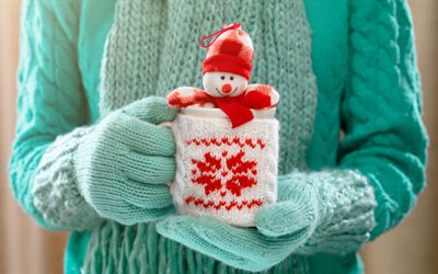Christmas, snowman, plush toy, New Year, mug in hand, winter, green sweater