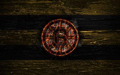 Download wallpapers boston bruins