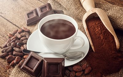 cocoa, white cup, chocolate, dessert, sweets, cocoa beans