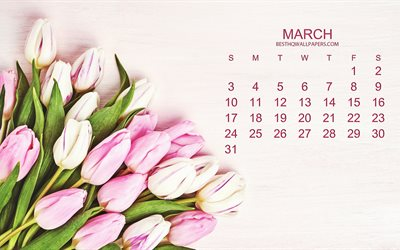 2019 March Calendar, pink tulips, pink floral background, 2019 calendar, March, beautiful spring flowers, tulips, spring, calendar for March 2019, creative art