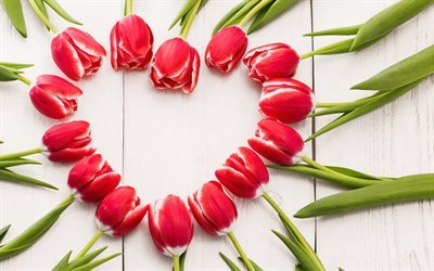 Red tulips, heart, spring, spring bouquet, tulips
