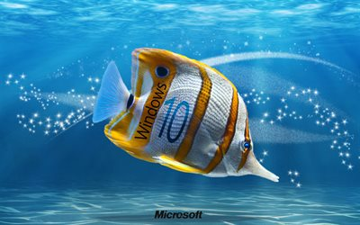 underwater, windows 10, fish, creative, Microsoft