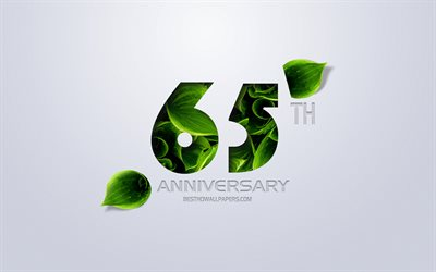 65th Anniversary sign, creative art, 65 Anniversary, green leaves, greeting card, 65 Years symbol, eco concepts, 65th Anniversary