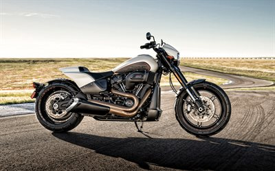 Harley-Davidson FXDR 114, 2019, side view, new silver FXDR, american motorcycles, Harley-Davidson